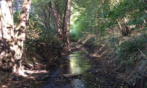 River and Water Health, Ouse Valley